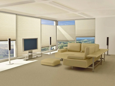 Sunfree Cordless Cellular blinds