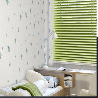 Custom made Aluminum Venetian Blinds